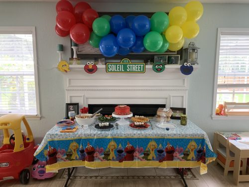 Sesame Street Birthday Party With Elmo Eclectic Grape